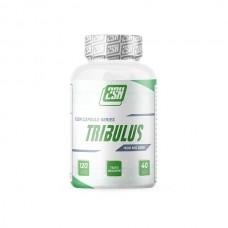 2SN, Tribulus 90%, 1500 мг, 120 капс.