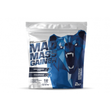 Mad Mass Gainer, 2 кг